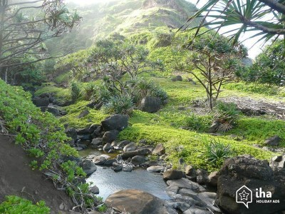 Maui Retreats - Maui Healing Retreat